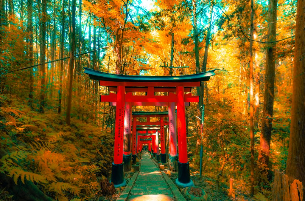 fushimi inari taisha shrine kyoto
