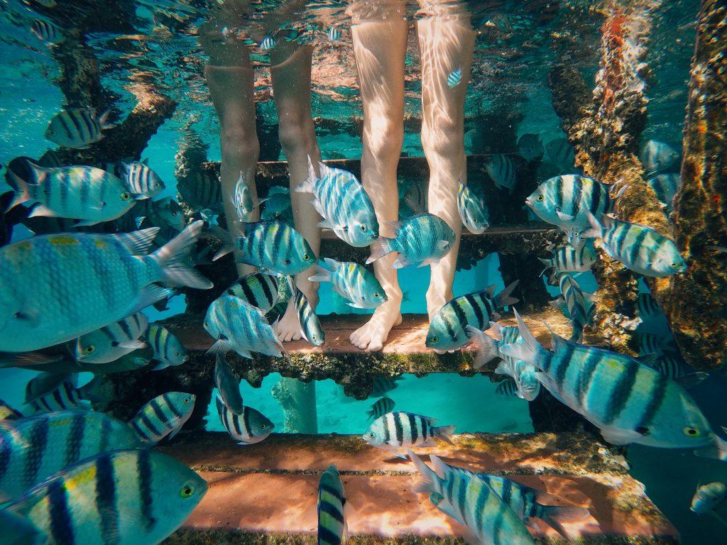 Eilat Tours