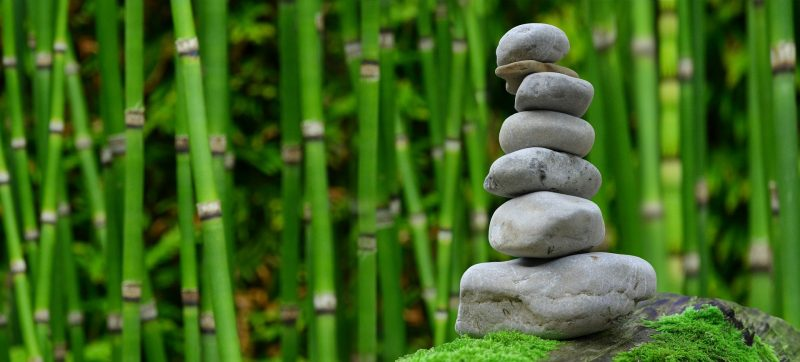 Japan Wellness Zen