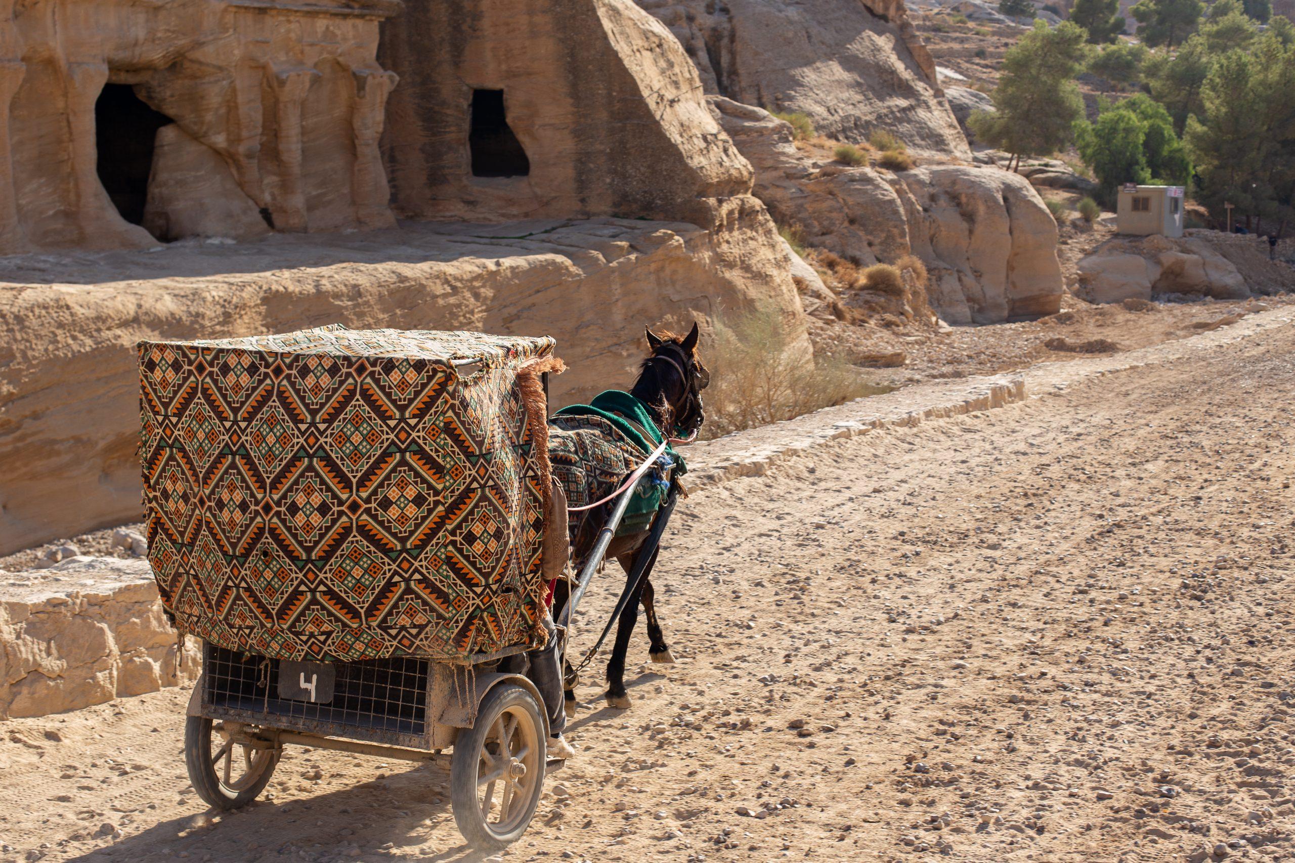 Petra Tour From Tel Aviv And Jerusalem - The Siq