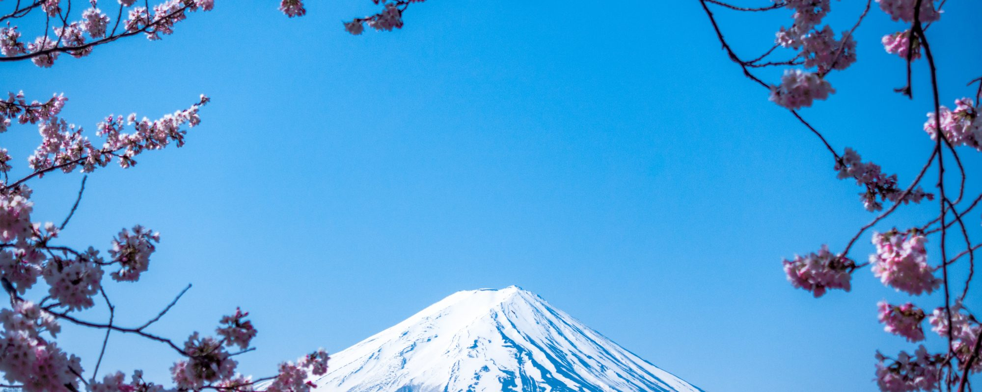 best experiences in japan