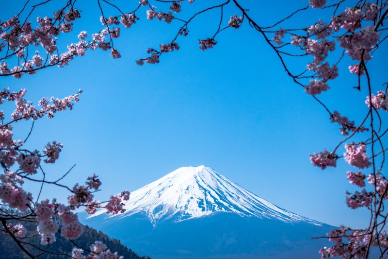 Best Experiences In Japan