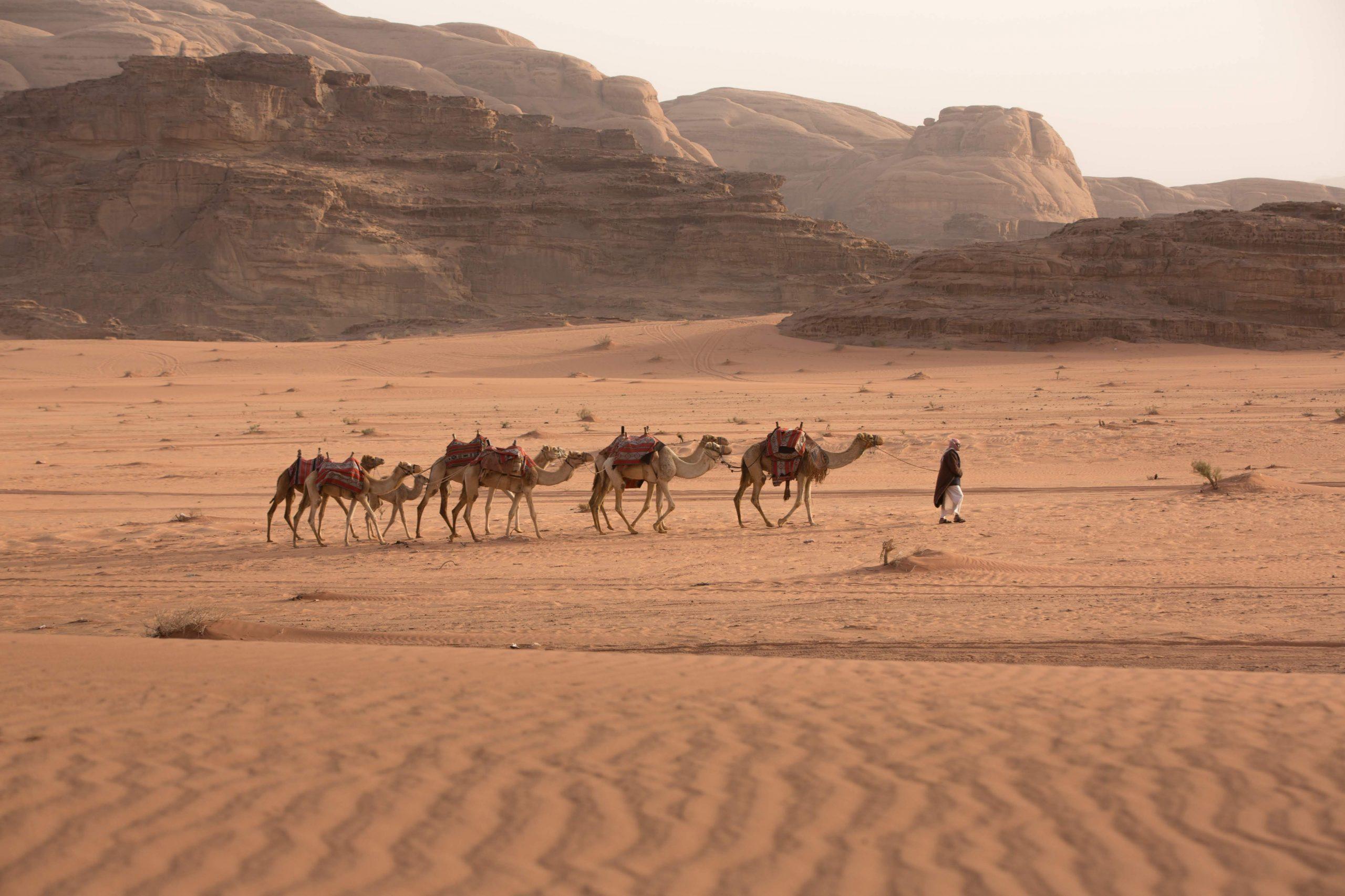 Petra And Wadi Rum From Jerusalem