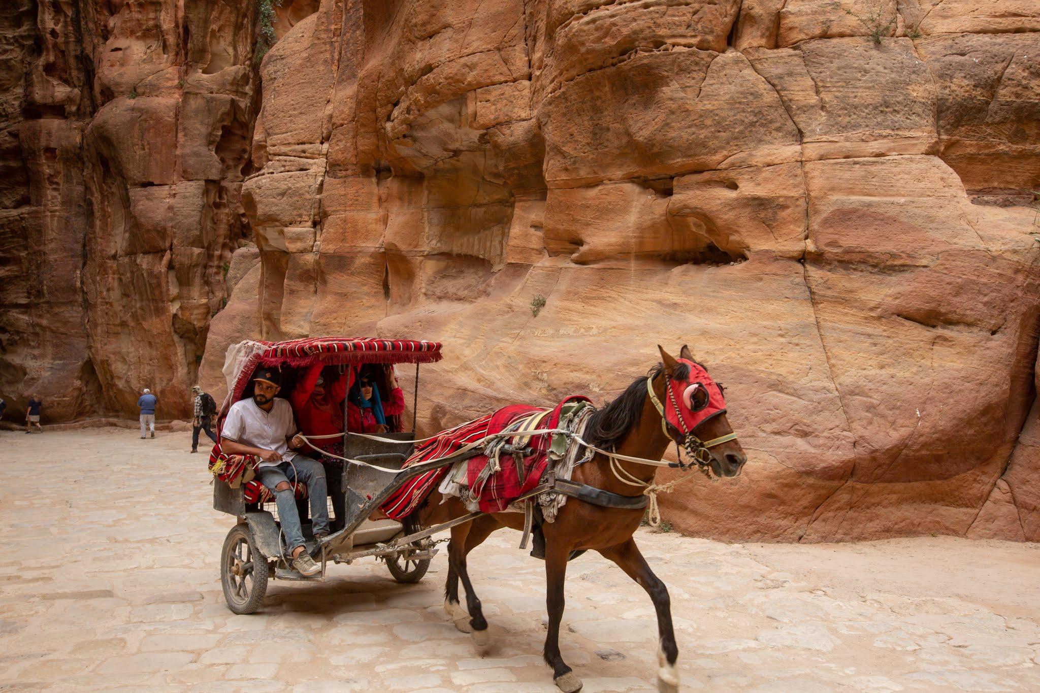 Petra Tour From Jerusalem