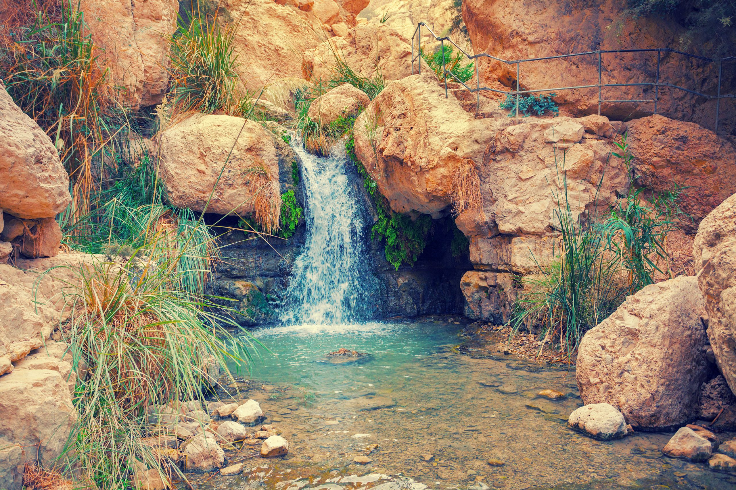 Ein Gedi Is Second Stop On The Tour