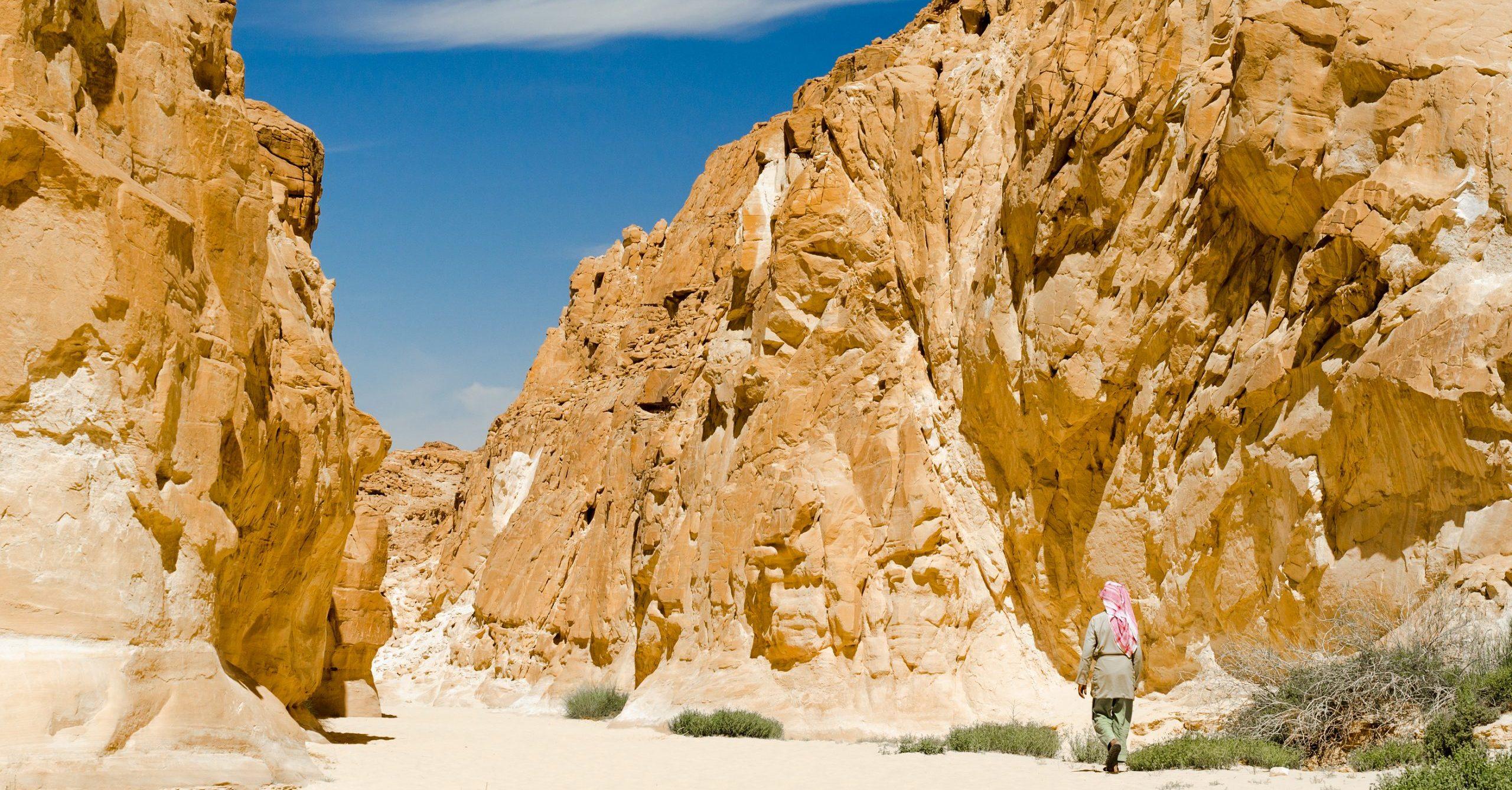 Bigstock Bedouin Walks Among The Rocks 334938307 1 Scaled E1587656652467