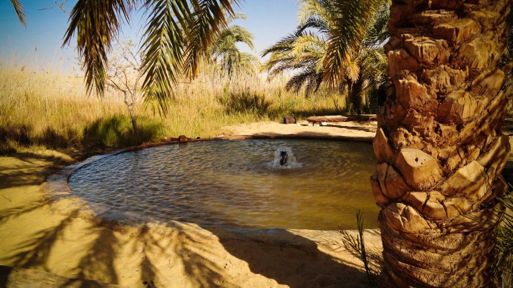 siwa oasis bath