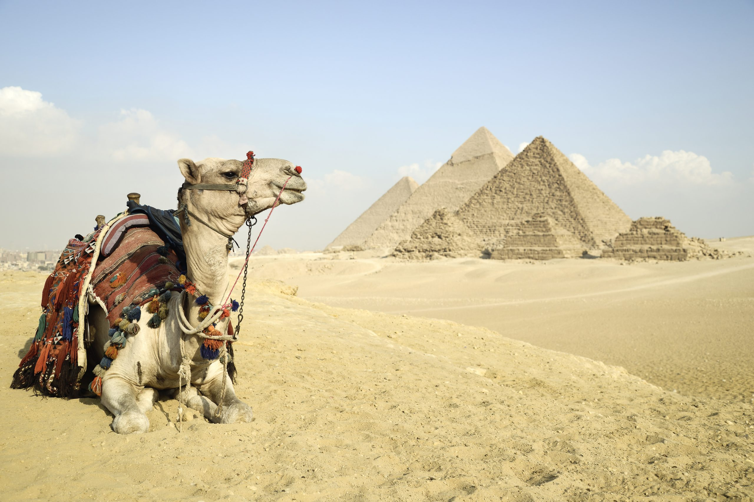 Best Of Cairo 2 Day Tour