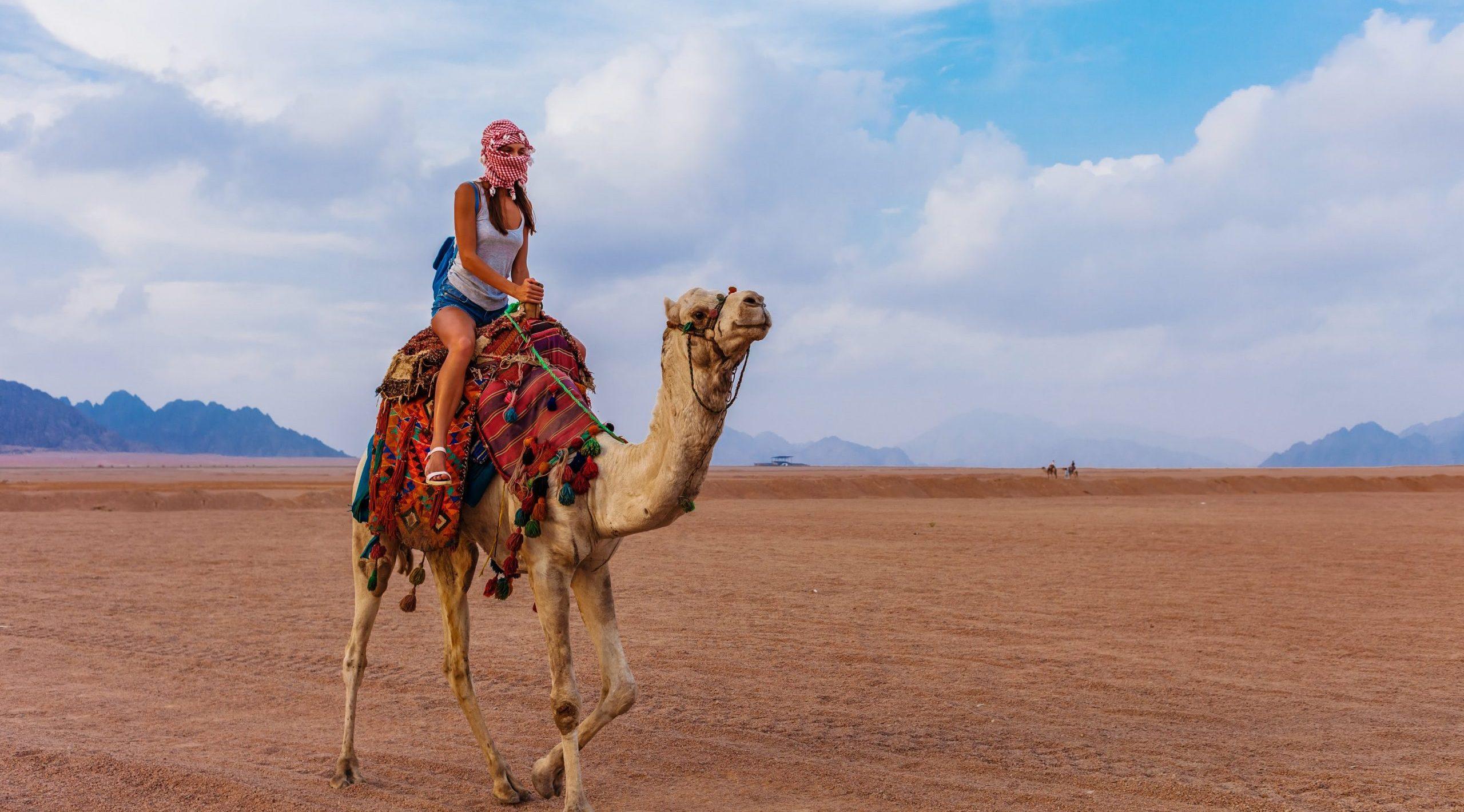 2 Day Sinai Camel Tour & Desert Camping Experience