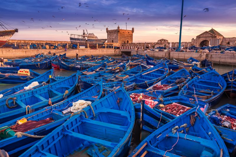 Blue Harbor Of Morocco