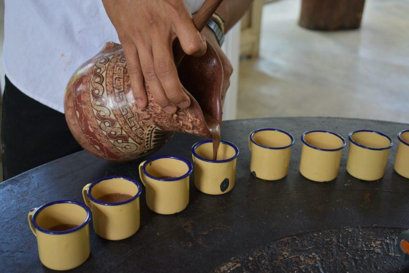 Costa Rica Coffee Tasting Experience