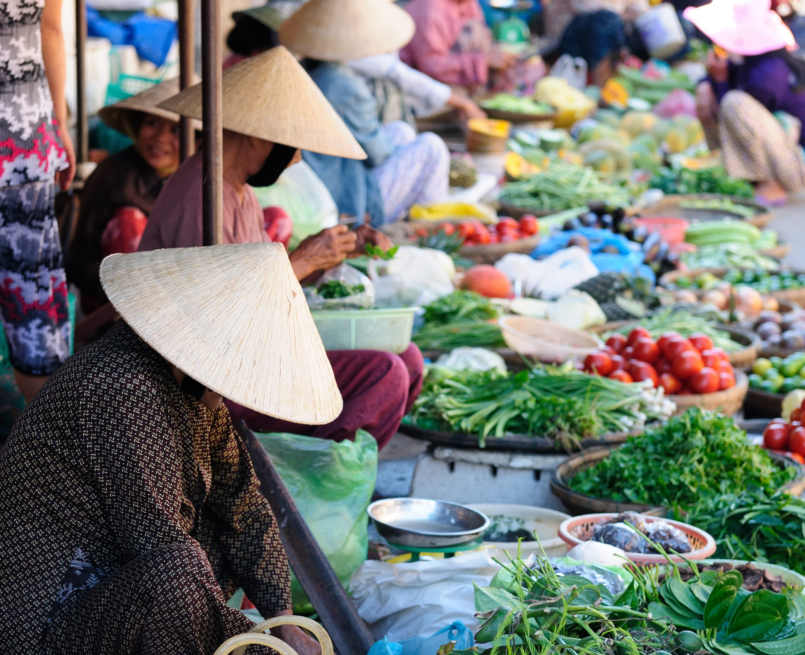 Learn About Typical Ingredients At The Hoi An Market During During Your Bicycle Tour And Cooking Class Experience