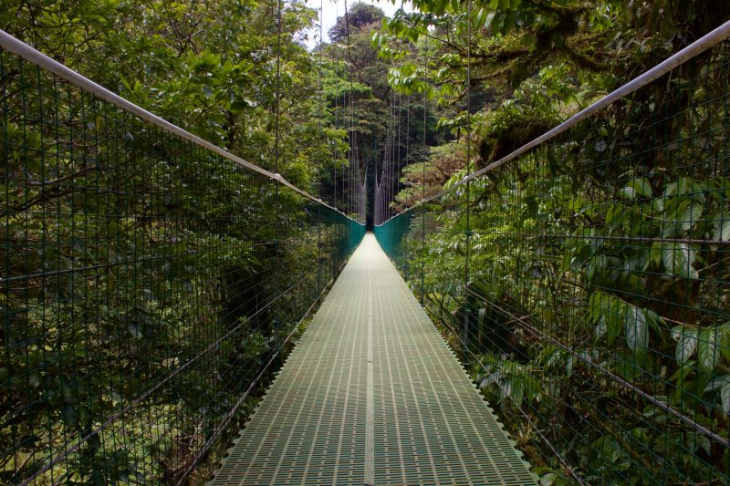 Monteverde_nature_experience