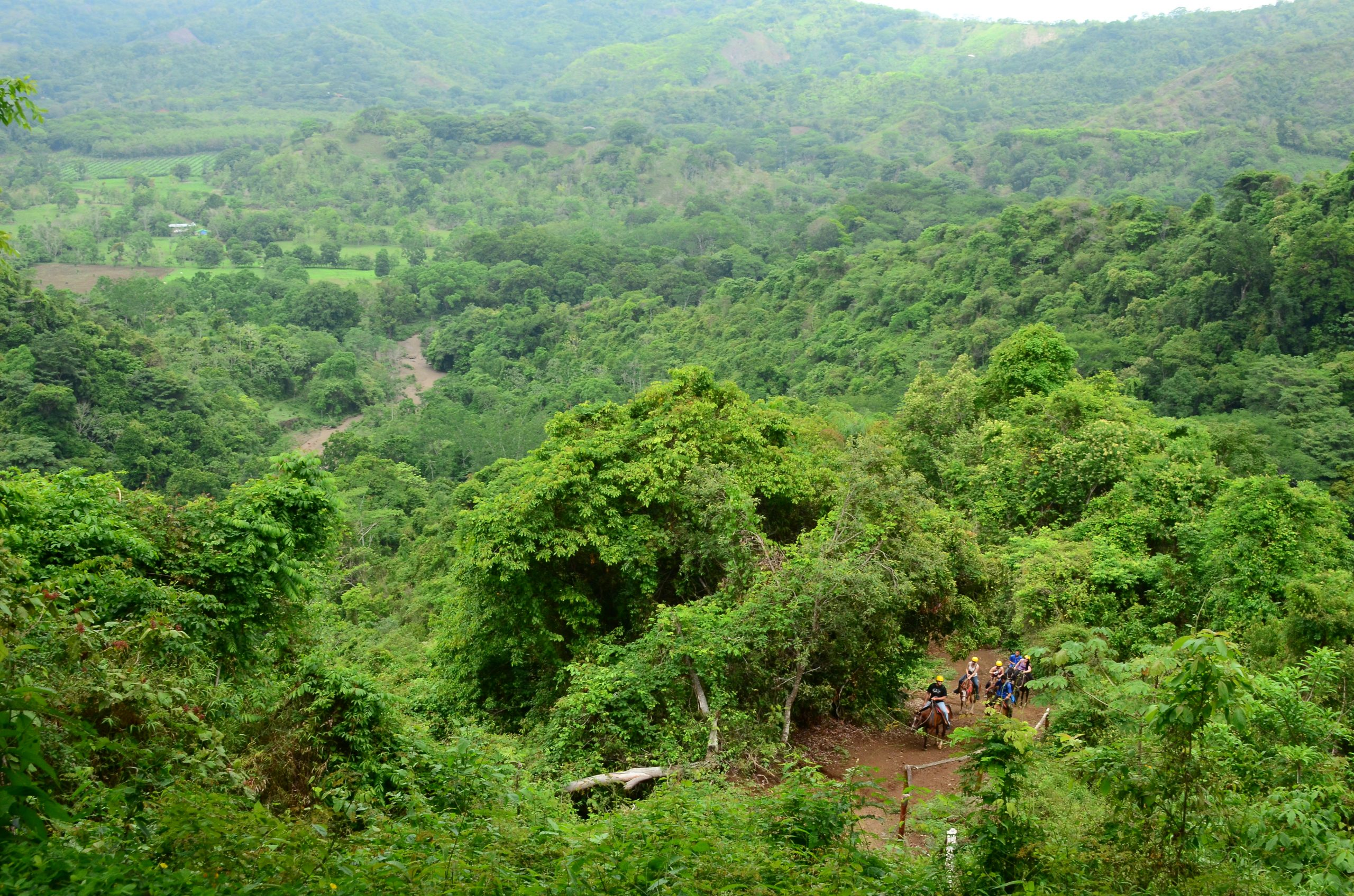 Take A Ride Through Costa Ricans Rainforest During The Full Day Adventure Tour At Vista Los Suenos_36