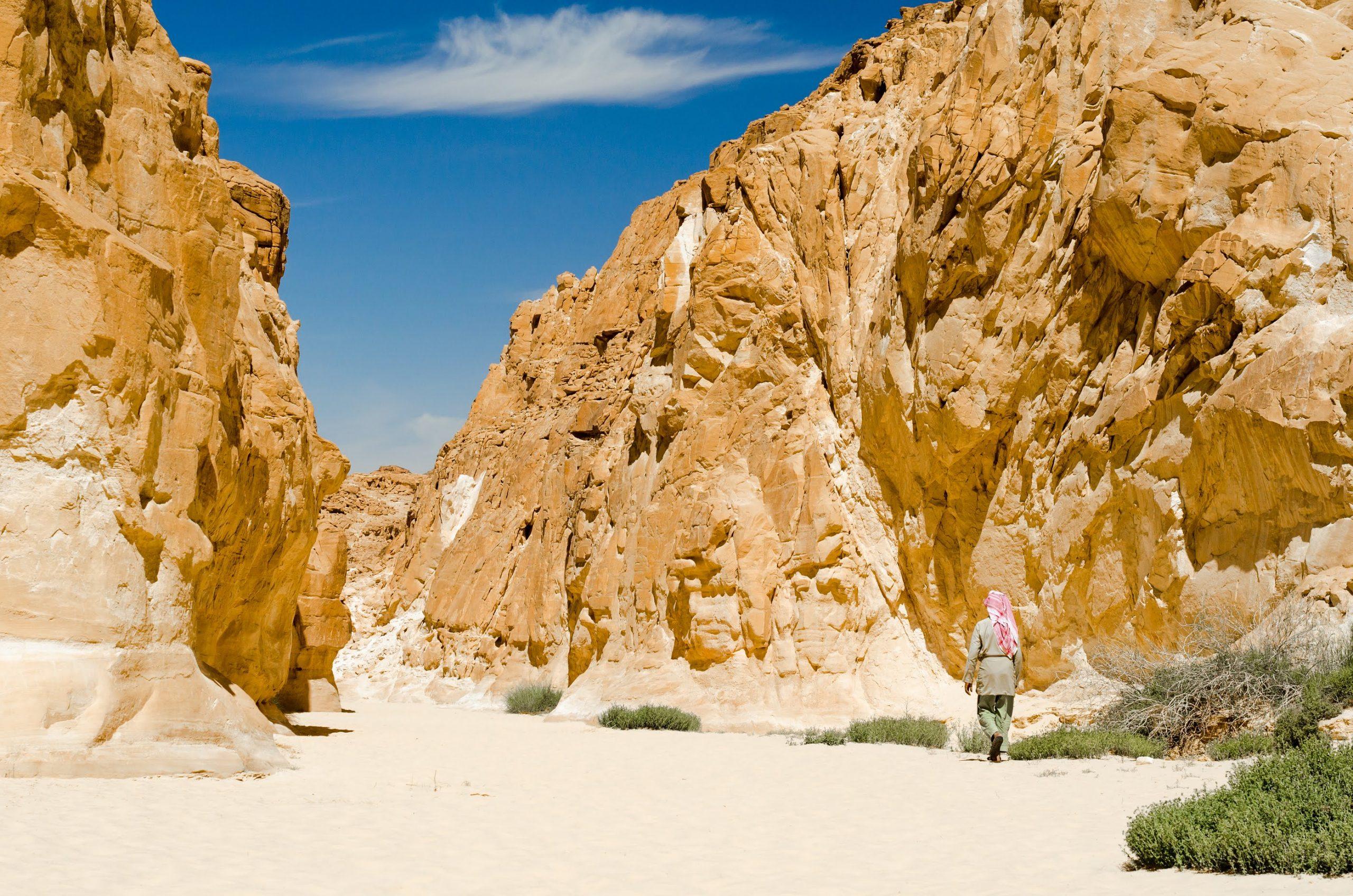 Sinai Desert Canyon Tour
