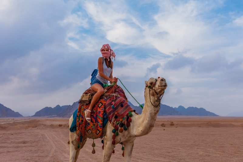 4 Day Sinai Camel Riding Tour