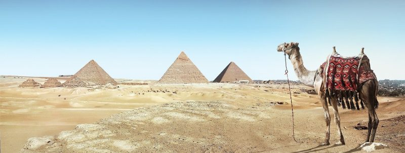 Visit Cairo