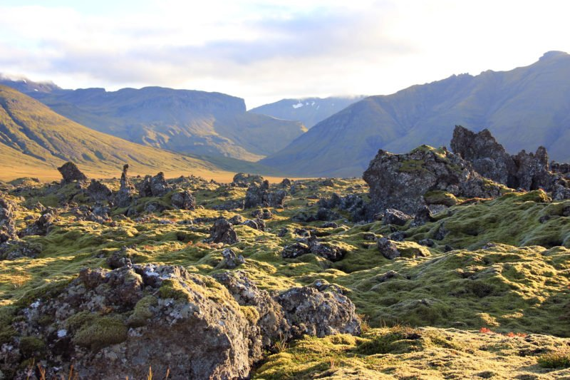 Drive Through The Berserkjahraun Lava Fields On Your Snæfellsnes Peninsula Day Tour