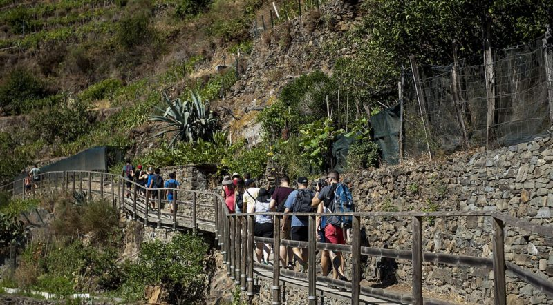 Embark On A Moderate Challenging Hike During Your Cinque Terre Hiking Day Tour From Florence_49