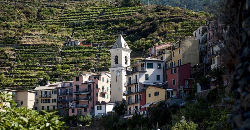 Enjoy A Beautiful Day Trip To Cinque Terre On Your Cinque Terre Hiking Day Tour From Florence_49