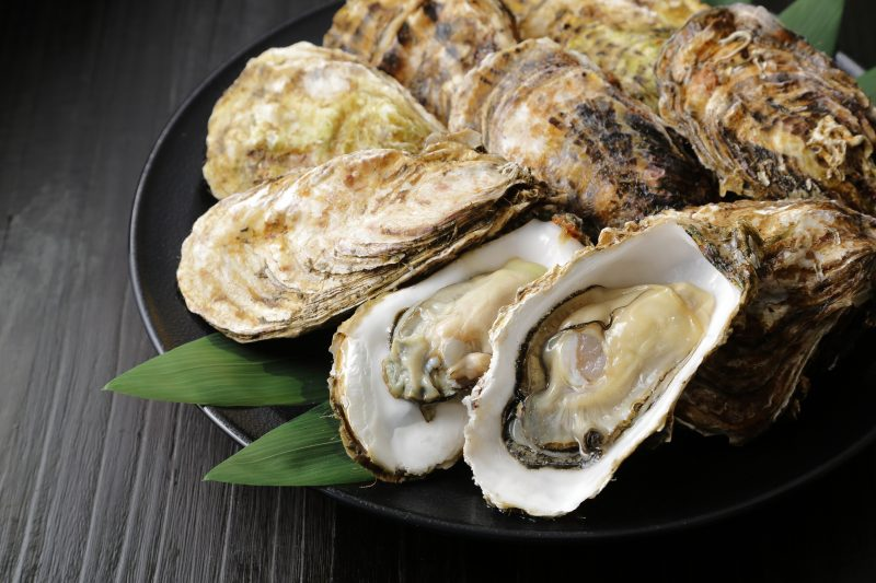 Enjoy Some Fresh Oysters On Your Wine And Oyster Tasting Experience At The Pelješac Peninsula