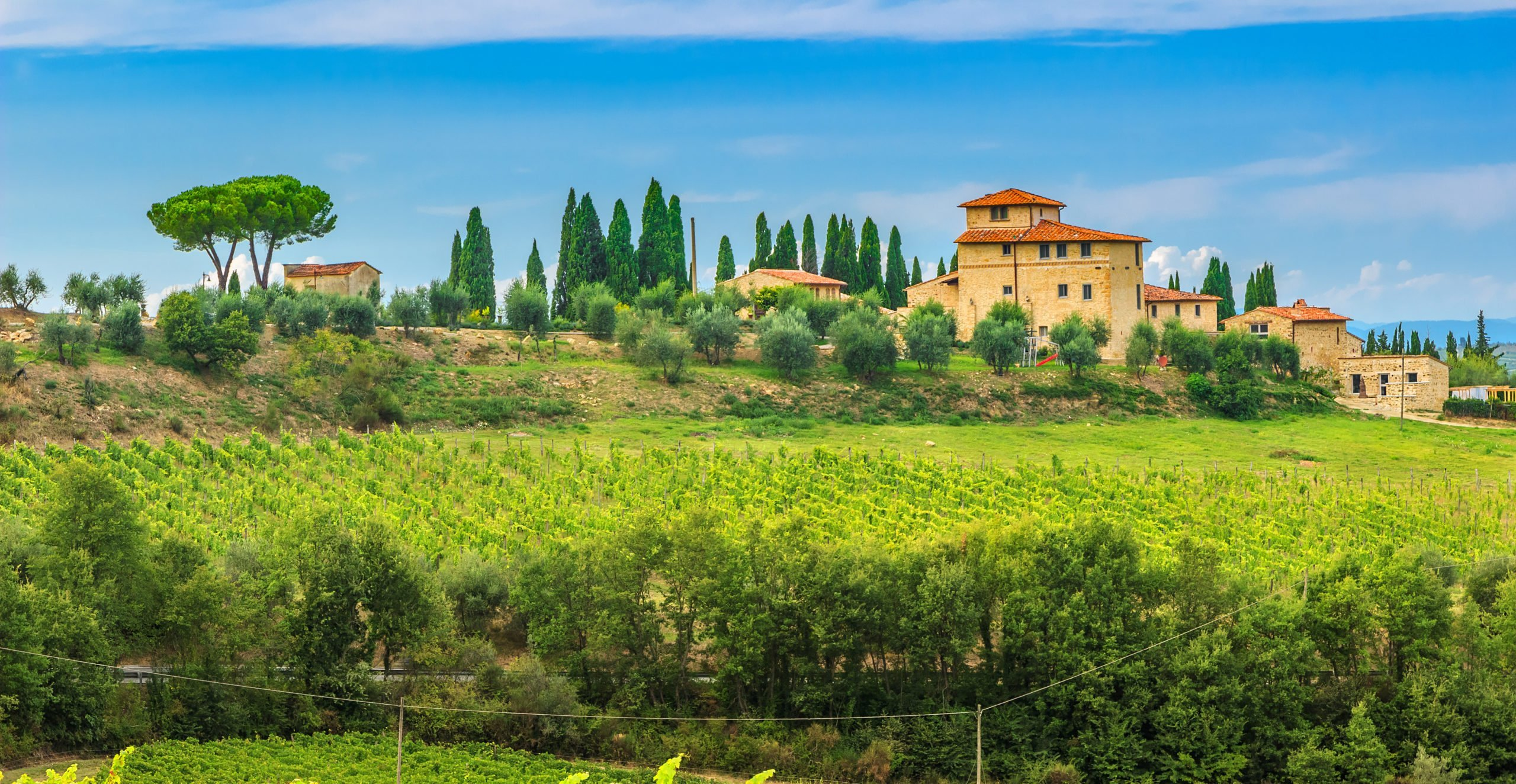 Enjoy The Stunning Views Over The Tuscan Vineyards On The Pizza And Gelato Cooking Class