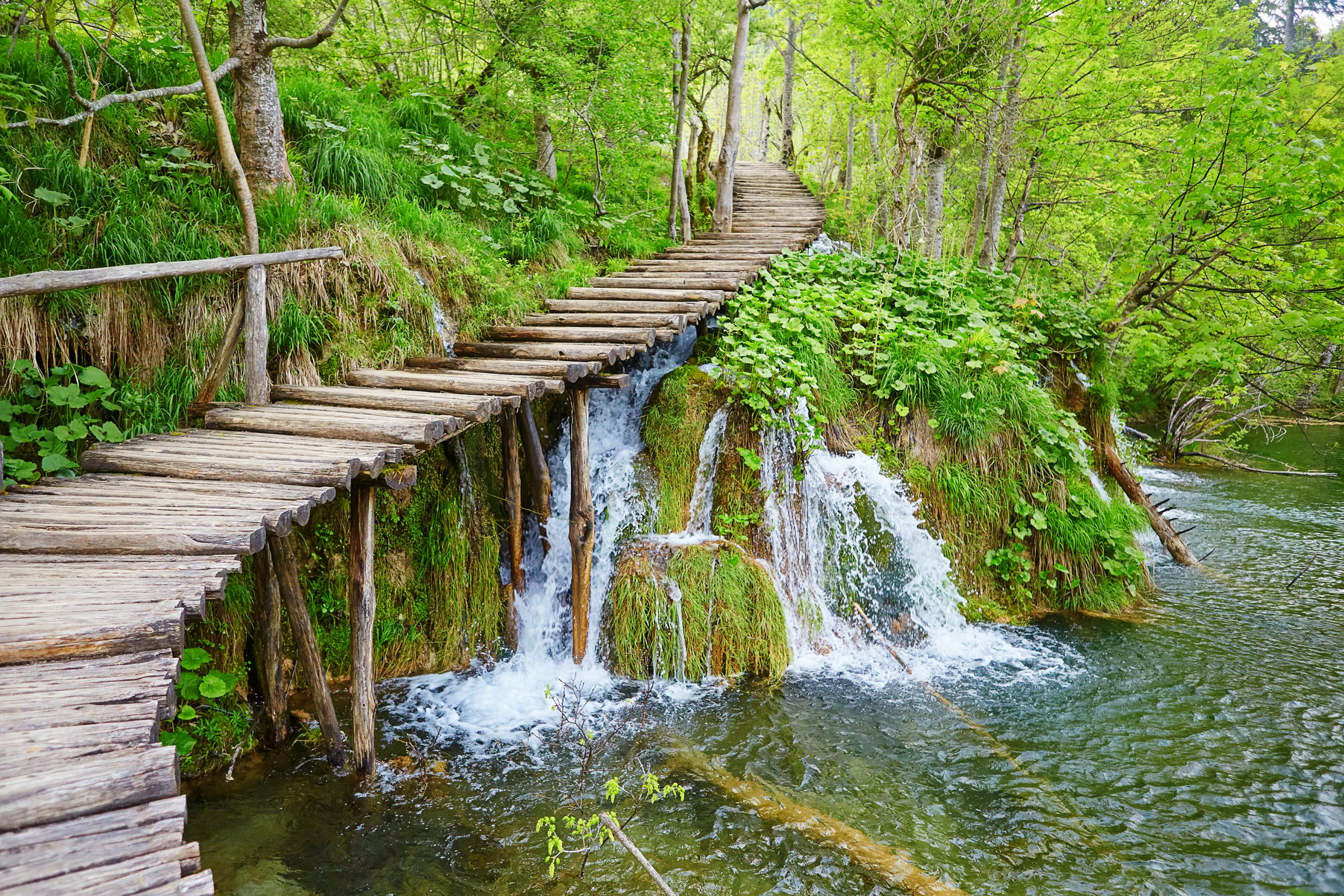 Explore The Beautiful Nature Of Plitvice During Your Plitvice National Park Day Tour