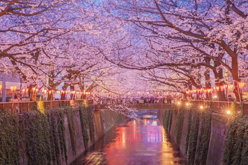 Start Your Tokyo Art Tour At The Nakameguro Station Near The River Meguro_44