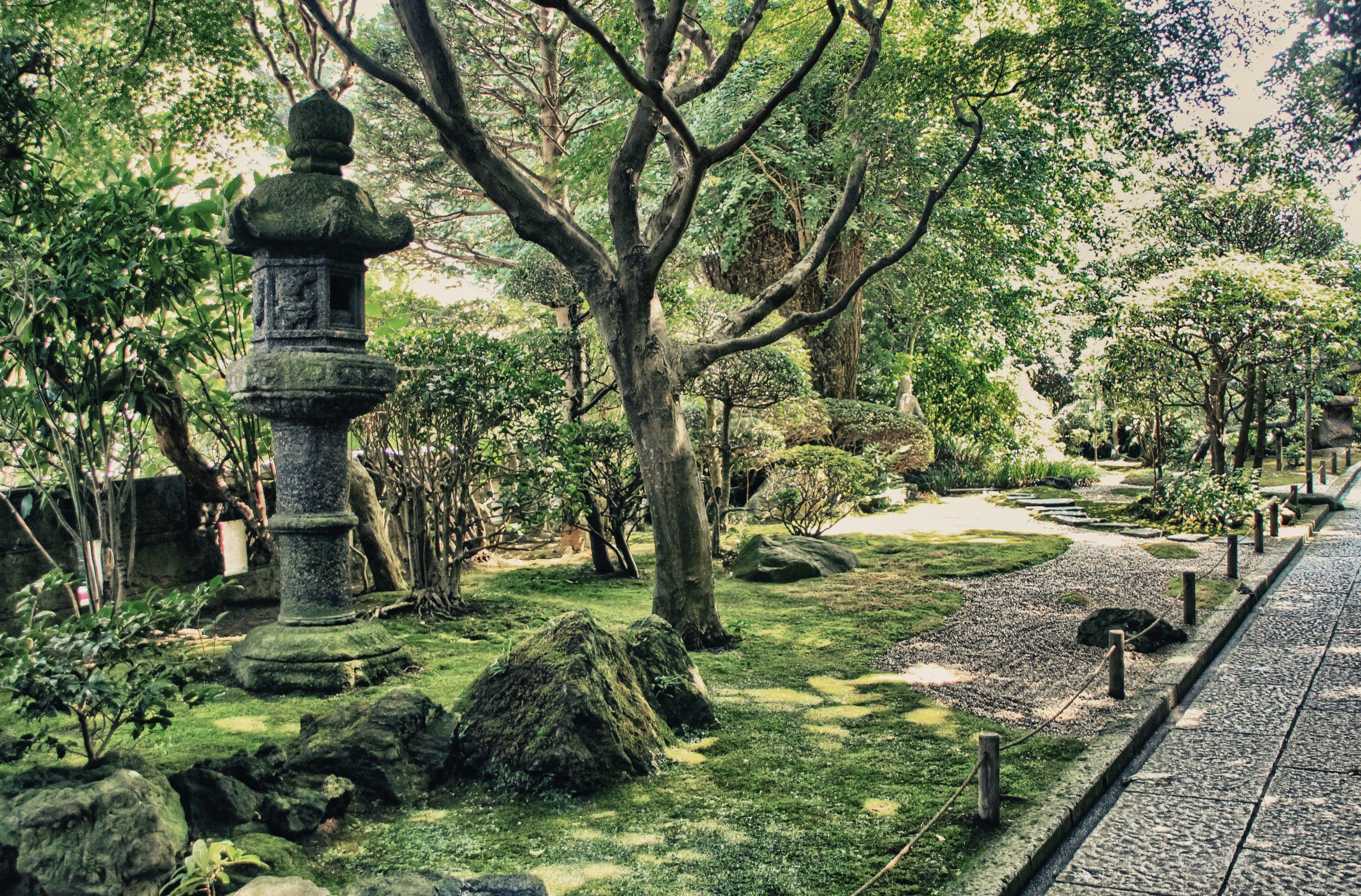Stroll Through The Garden Of Kotukin Temple On The Kamakura Walking Tour And Tea Ceremony