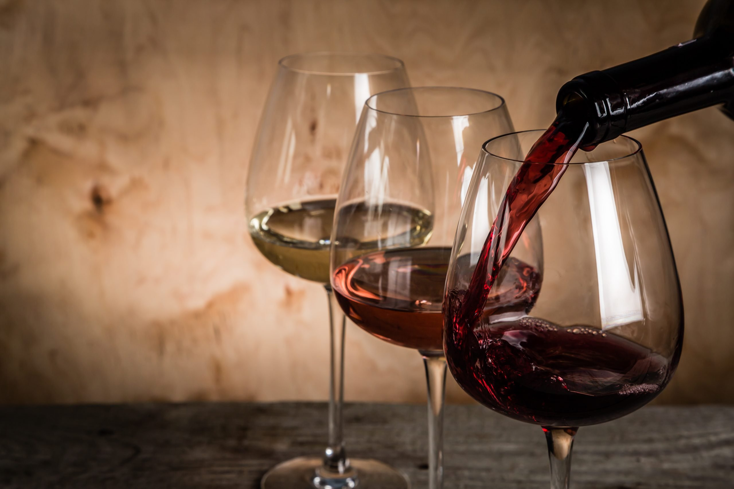 Taste The Local Wines On The Wine And Oyster Tasting Experience At The Pelješac Peninsula