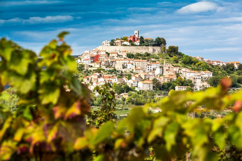 View Of Motovun From The Vinyards