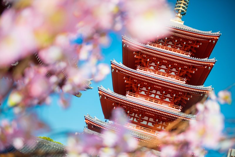 Visit The Breathtaking Senso Ji Temple During Your Ultimate Tokyo Tour