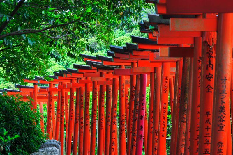 Vist The Nezushrine During The Tokyo Ultimate Art Tour_44