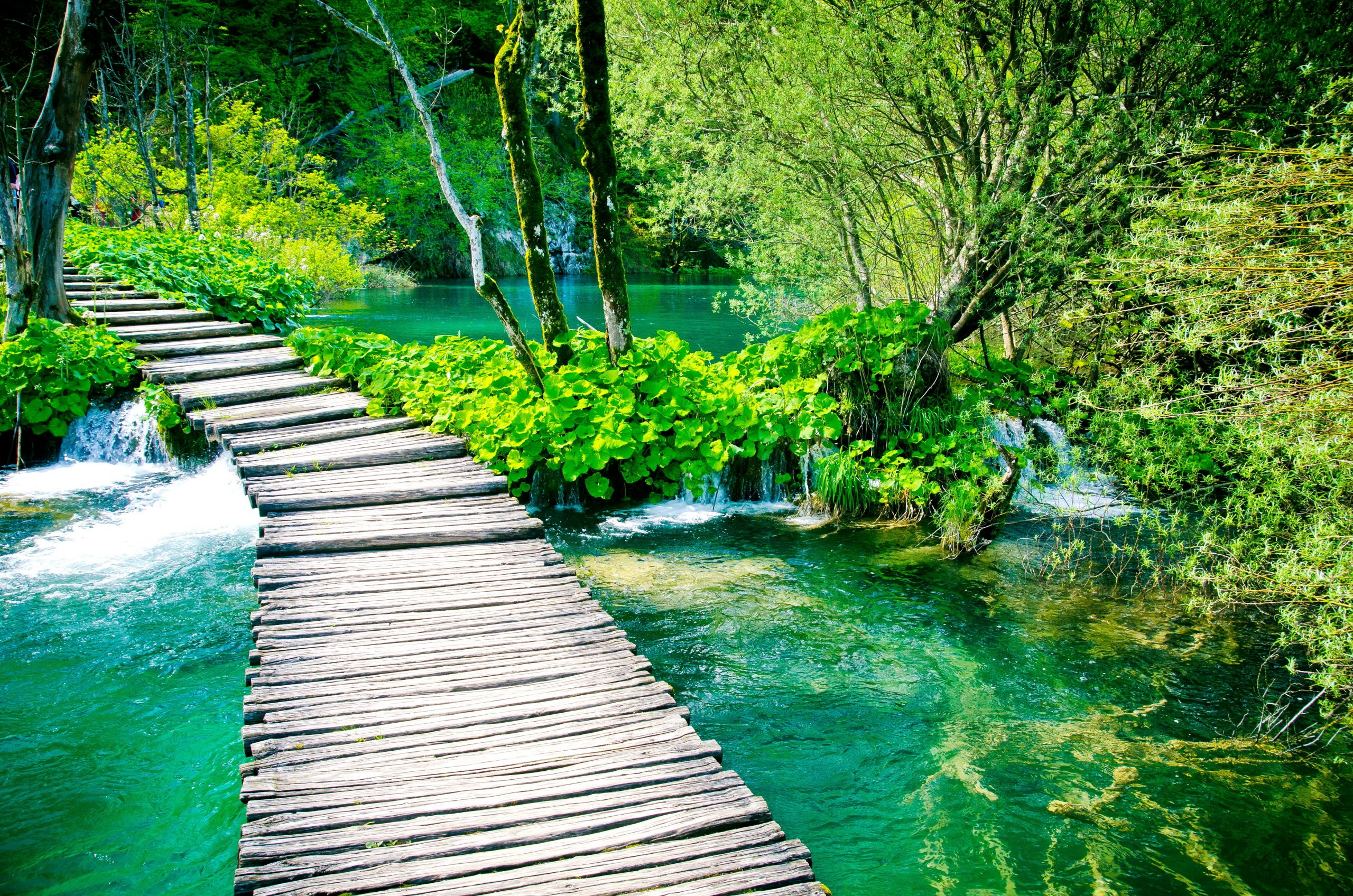 Wander On The Wooden Paths During The Plitvice National Park Day Tour From Split