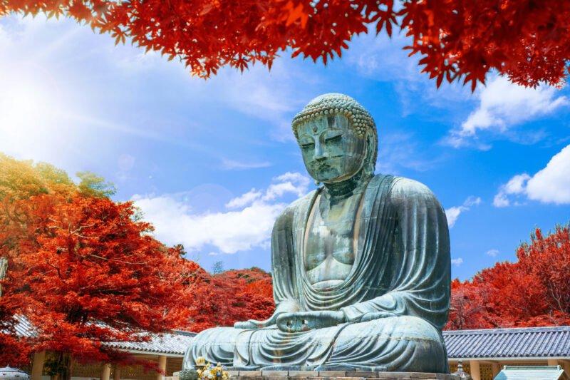 Tokyo Kamakura Walking Tour And Traditional Tea Ceremony