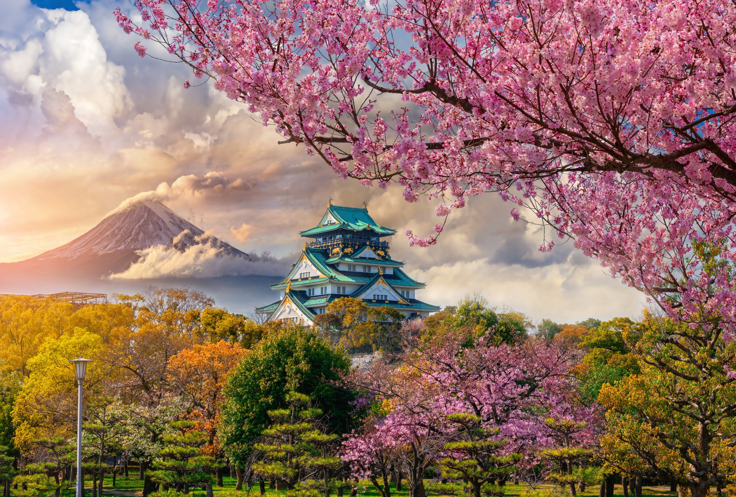 10 Day Ultimate Japan Tour Package