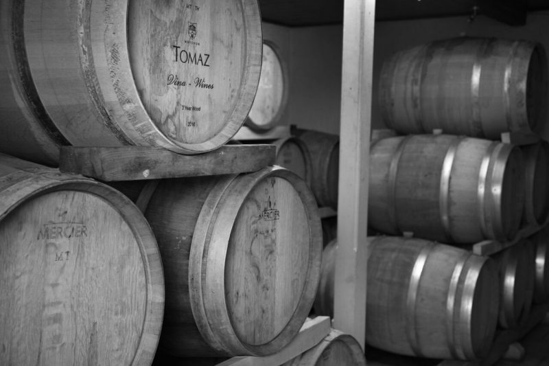 Visit A Local Winery On Your Motovun Taste The Istrian Wine On Your Motovun Walking Tour And The Taste Of Istria From Rijeka