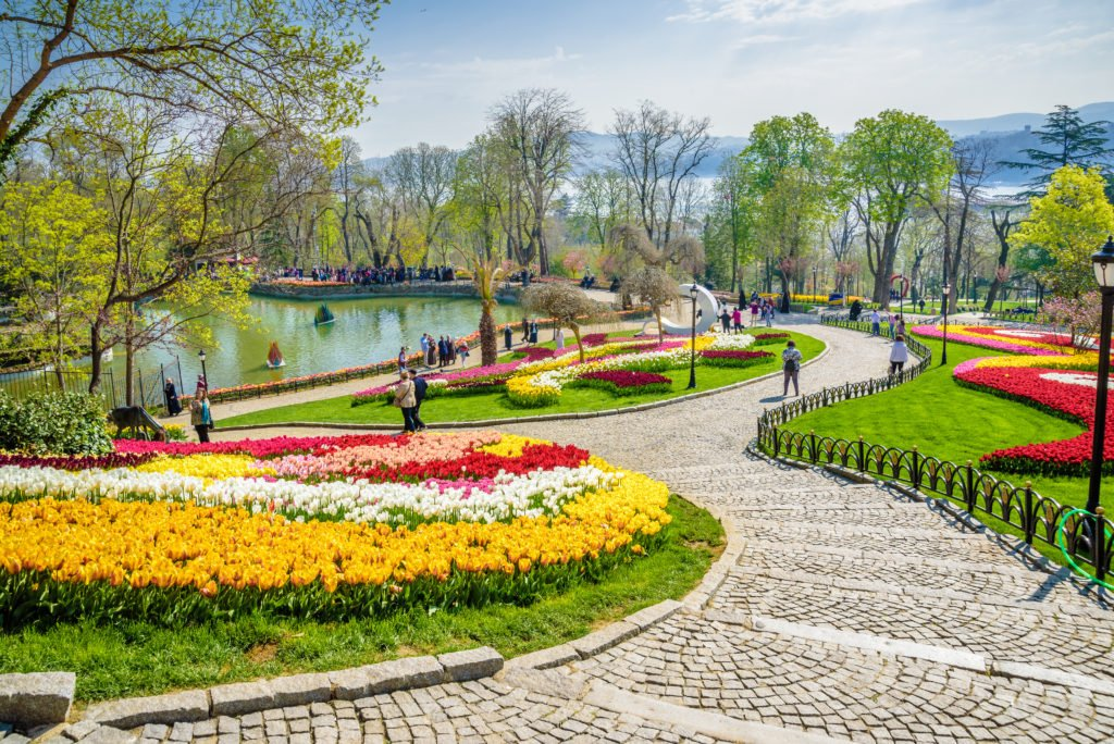 flowers in istanbul visit