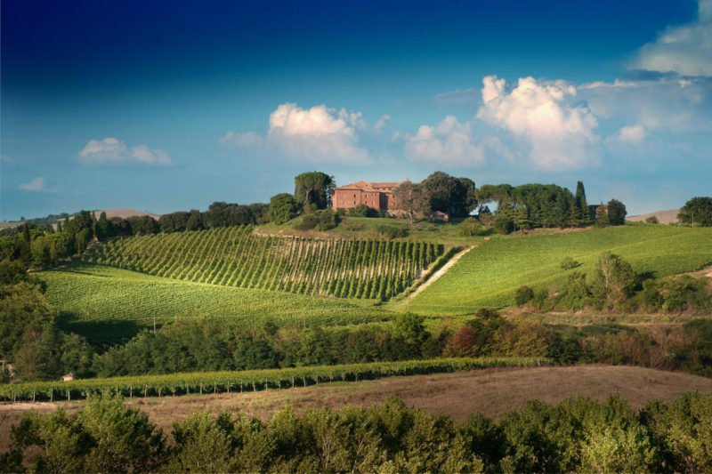 Montalcino-wine-and-lunch_52