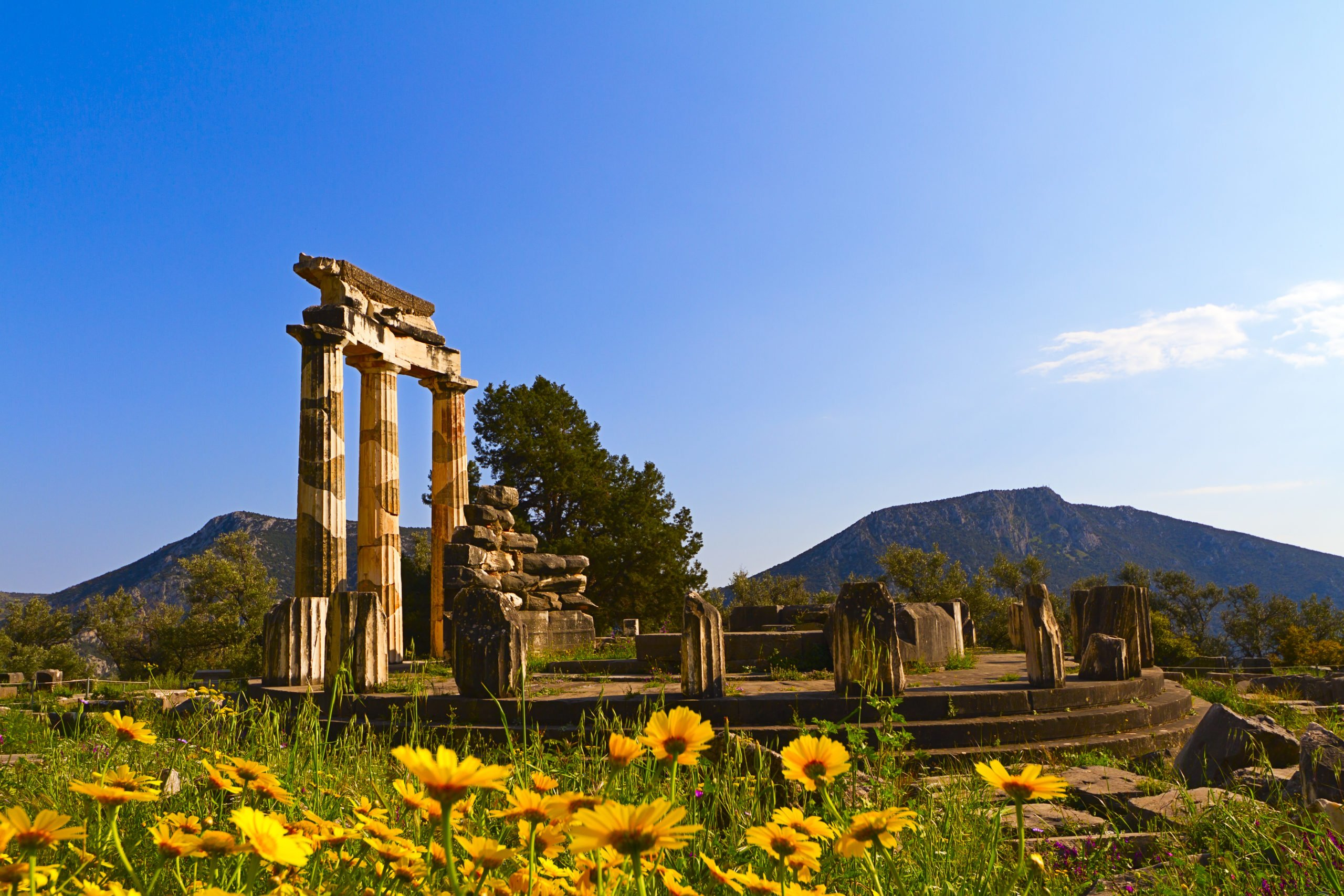 Visit The Athena Pronaia Sanctuary On The Delphi Tour From Athens