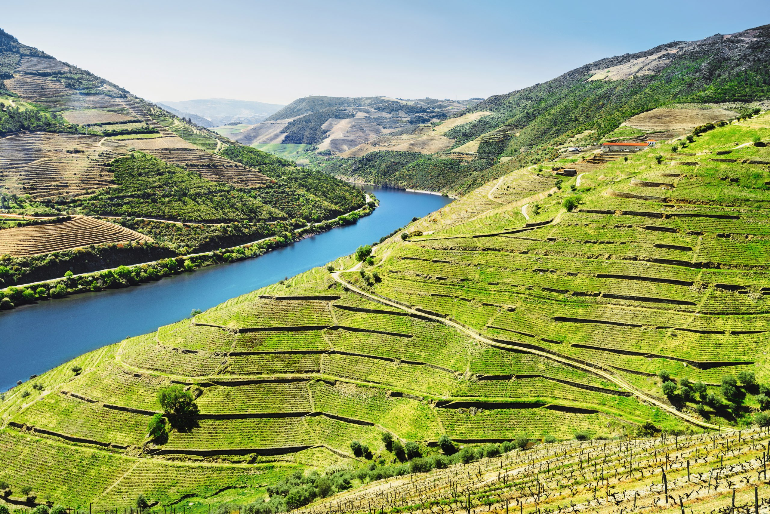 Admire The Marvelous Views Over The Valley And The Vineyards On The Douro Valley Wine Tasting Tour From Porto
