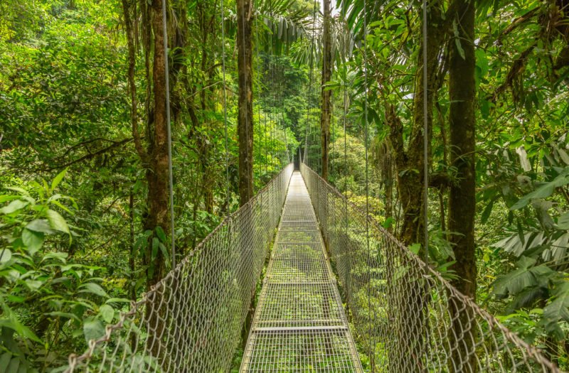Enjoy Some Adventure Activities In The Arenal Forest On The On The Tortuguero, Arenal & Manuel Antonio 10 Day Adventure Package Tour