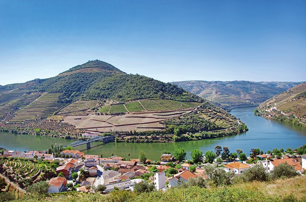 Enjoy The Beautiful Views On The Douro Valley, Wine Tasting And Panoramic Cruise On The Pinhão From Porto