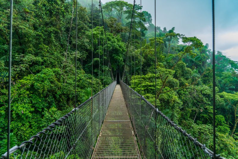 Enjoy The Walks Over The Hanging Bridges Of Arenal