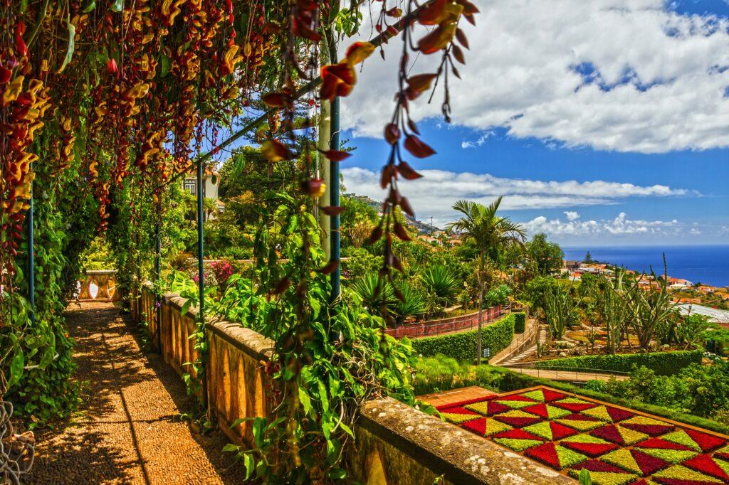 Explore Madeira