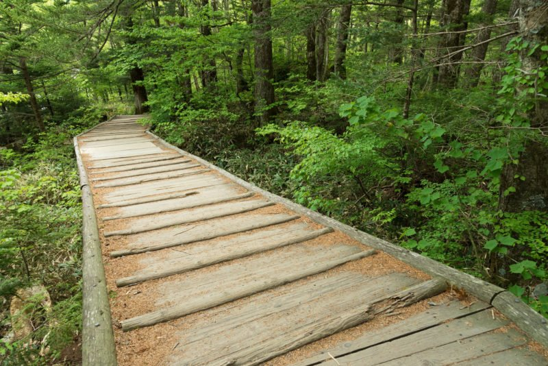 Hike Through The Idyllic Landscape Of Kamikochi Park During The Kamikochi Hiking Tour From Hirayu Onsen