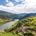 Join The Douro Valley, Wine Tasting And Panoramic Cruise On The Pinhão From Porto