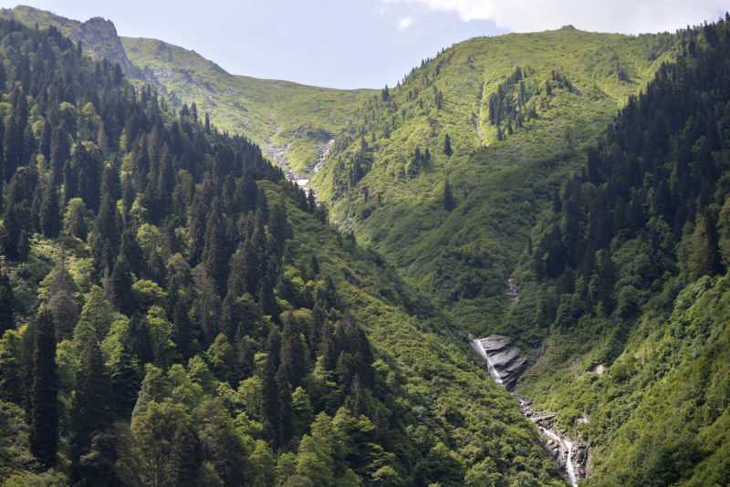 Join Us For An Exciting Tour To The Ayder Highlands