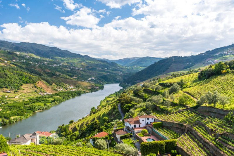 Join Us To A Tour Of The Douro Valley From Porto