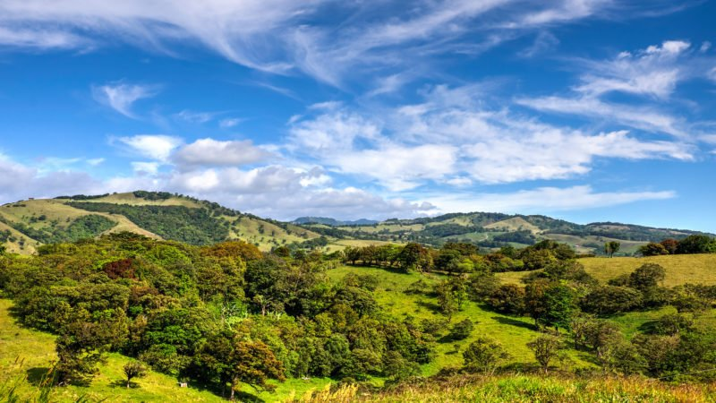 Learn More About Costa Ricas Coffee Plantations On The Highlights Of Costa Rica 9 Day Package Tour - Arenal - Monteverde- Manuel Antonio